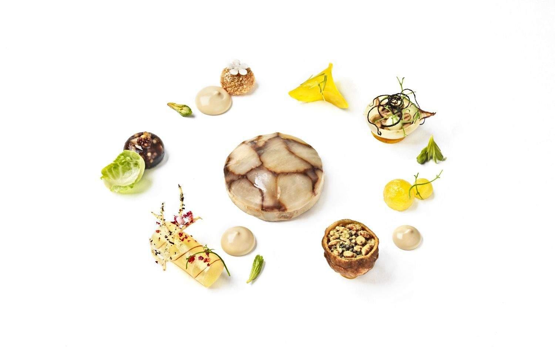 Vegaaniannos: maa-artisokkamosaiikki maustettuna suomalaisella herkkutatilla ja kuusenkerkällä; paahdettua keltajuurta; sipulia, omenaa ja poltettua salottisipulia; rapea maa-artisokkakroketti; tattihyytelöä; viinietikalla maustettua omenaa; pikkelöityä kuusenkerkkää ja paahdettua viljaa. Kastikkeena annoksessa on kuusiöljyllä maustettu sipuli-herkkutattiliemi.